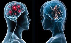 mozek-99_2